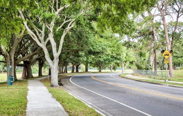 Golf Club Community around Lake Orlando