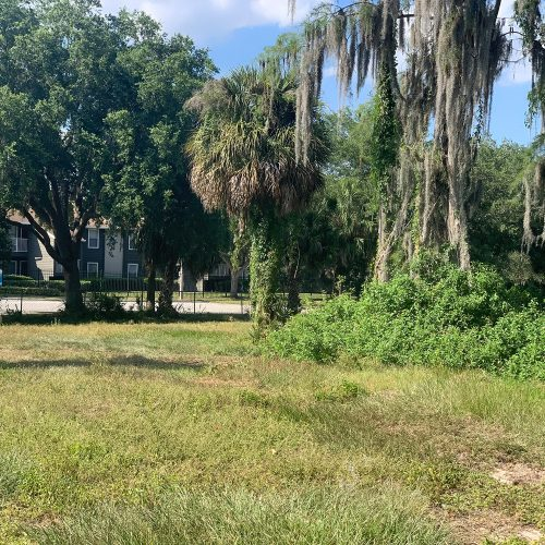 Abandoned former golf course land neighboring apartment